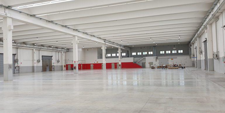rovellasca capannone industriale logistico (19)